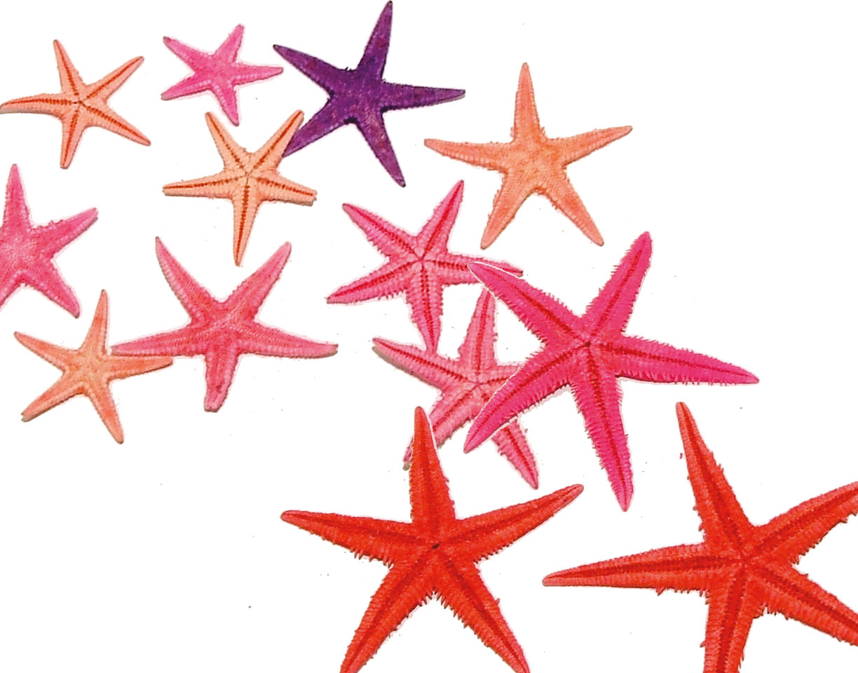 Coloured Starfish
